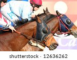 Three horses racing neck on neck to win - stock photo