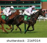 horses passing grandstand - stock photo
