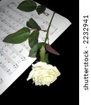 Hymn music and white rose - stock photo