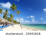 Tourist resort beach dotted with palm trees, beach umbrellas and chairs. Travel & vacation collection. - stock photo