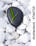Small green bamboo leaf on a neat, black Zen-Stone. Lying on many white pebbles. - stock photo