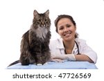 Smiling Vet and  homeless cat on white background. Veterinarian and pussy cat. - stock photo