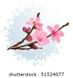 Pink  blossom - stock vector