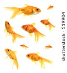Assorted Goldfish - stock photo