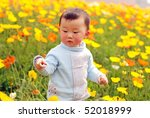 cute baby boy in flower field - stock photo