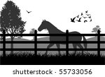 Horse on the grass illustration - stock vector