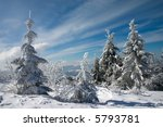 snow covered fir trees in mountains under blue sky with clouds - stock photo