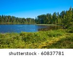 Finnish landscape: Wild forrest and lake - stock photo