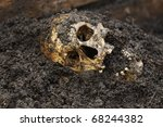 Real human skull figured as crime scene on a farm - stock photo