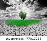 concept of environment with tree and dry soil - stock photo