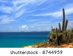 view on los frailes, venezuela, with cactus - stock photo