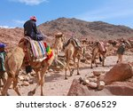 EGYPT - FEBRUARY 5: Camel guide climbs up to Mount Sinai on February 5, 2011 in St Catherine's district, Egypt. Camels are often used to assist fatigued tourists climbing the 2285m summit. - stock photo