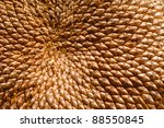 A close up of a sunflower with pattern of seeds - stock photo