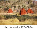 Termite nests in West Australian outback - stock photo