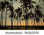 palm silhouettes at sunset - stock photo