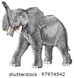 elephant with raised trunk isolated on white background / eps10 - stock vector