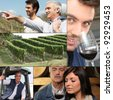 Collage of winemakers, wine and vineyards - stock photo