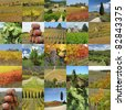 collage with tuscan vineyards, Italy, Europe - stock photo