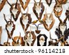 Deer head trophy collection on a white wall - stock photo