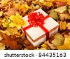 Gift box in fall foliage. Autumn holiday. - stock photo