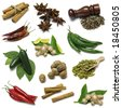 Spices sampler - stock photo