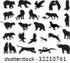 Animals vector vol_6 - stock vector