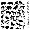 Collection of silhouettes of animals from all continents. A vector illustration - stock vector