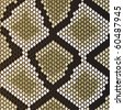 Snake skin pattern for design as a background. Jpeg version also available in gallery - stock vector