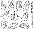 Vector illustration of humanâ??s hands in different poses. - stock vector