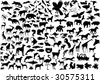 Wildlife silhouettes - stock vector
